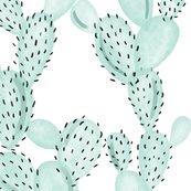 Raqua-paddle-cactus-no-rose_shop_thumb