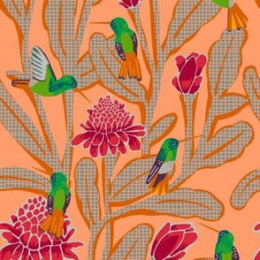 hummingbirds + torch ginger [peach]