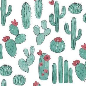Teal Cactus Blooms