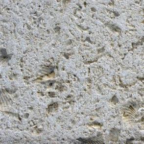 Limning of Limestone