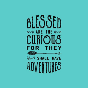 Blessed are the curious - Pillow - Fat Quarter