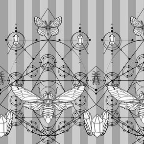 cicadamancy_v7_whiteprint