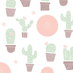 Cactus Company