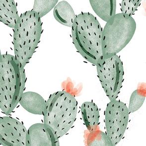 green paddle cactus + rose // oversized