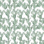 Rgreen-paddle-cactus-no-rose_shop_thumb