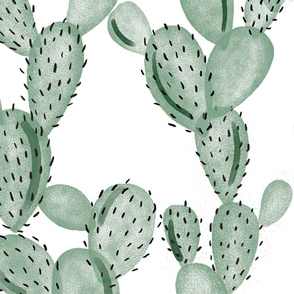green paddle cactus // oversized