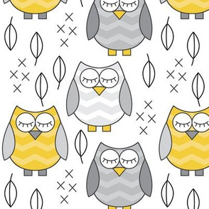 gold and grey sleeping owls
