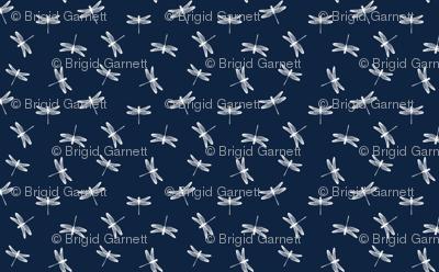 58x36x150delightfuldancingdragonflies_preview