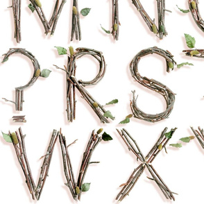 3D Twigs Alphabet - large