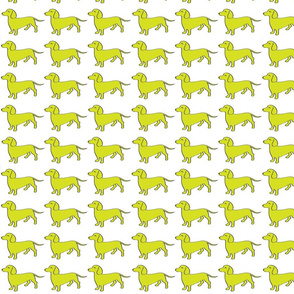 Weenie Collective - Lime - Dachshund - Dog