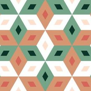 06277213 : trombus 3 : succulent