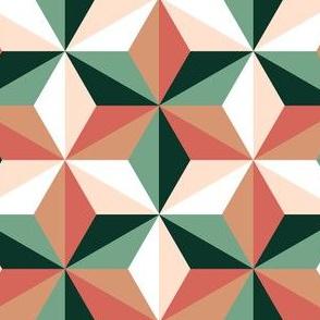 06277214 : SC3C isosceles : succulent