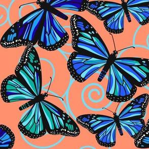 Butterfly Blues on orange