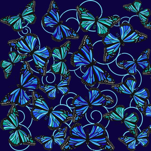 Butterfly Blues on Navy