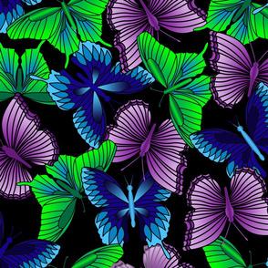 Cool Butterflies on Black