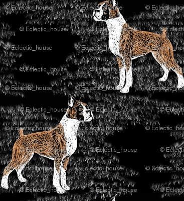 Rtinted_scratchboard_boxer_preview