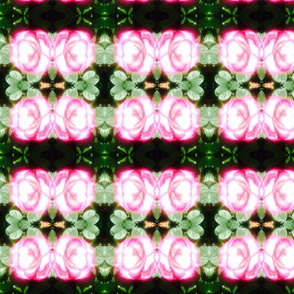 Garden Shibori