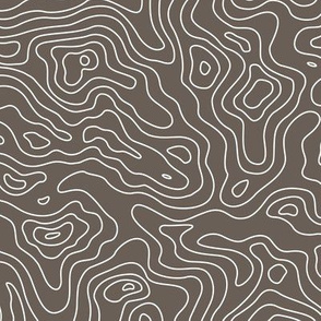 Taupe Light Brown and White Stripes Wave Elevation Topographic Topo Map Pattern