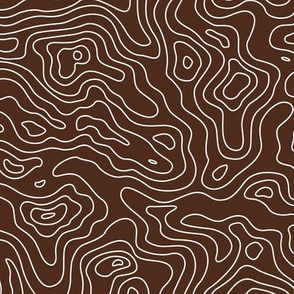 Brown and White Stripes Wave Elevation Topographic Topo Map Pattern