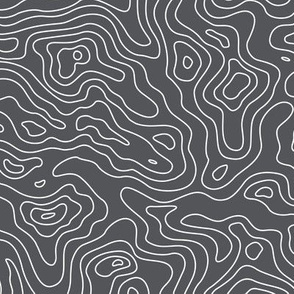 Dark Grey and White Stripes Wave Elevation Topographic Topo Map Pattern