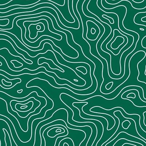 Forest Green and White Stripes Wave Elevation Topographic Topo Map Pattern -KC-01-01-01