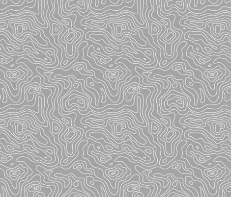 Rlight_gray_and_white_map_lines_stripes-01-01-01-01_shop_preview