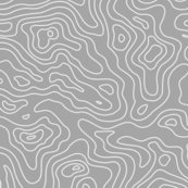 Rlight_gray_and_white_map_lines_stripes-01-01-01-01_shop_thumb