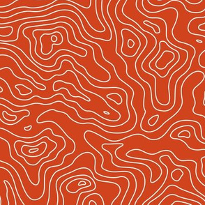 Red Orange Burnt Umber and White Stripes Wave Elevation Topographic Topo Map Pattern
