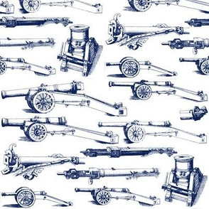 Olde Artillery in Navy // Small