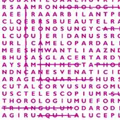 Pink Crossword Puzzle