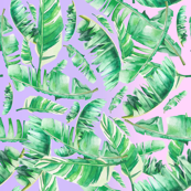 Tropical Leaves / Pink to Lavender Gradient