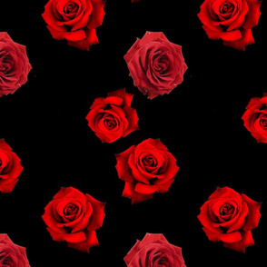 Scattered Red Roses on Black