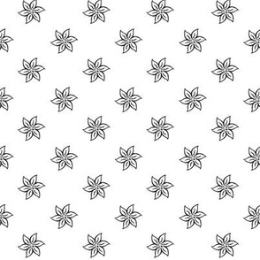edelweiss on white - small