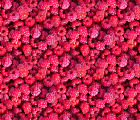 Delicious Summer Raspberries fabric by axeleon on Spoonflower - custom fabric