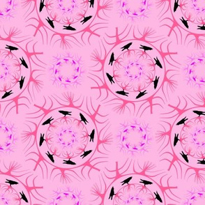 runda  raven rosa