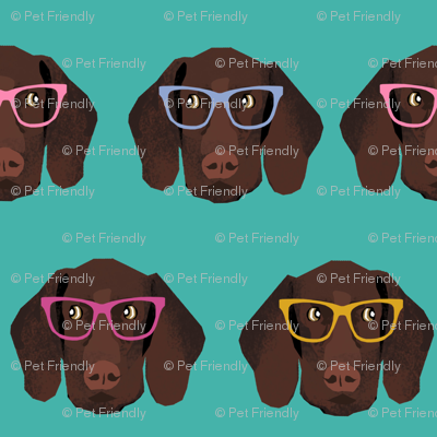 german shorthaired pointer in glasses fabric - turquoise