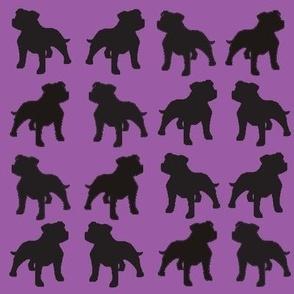 Staffies on Light Purple