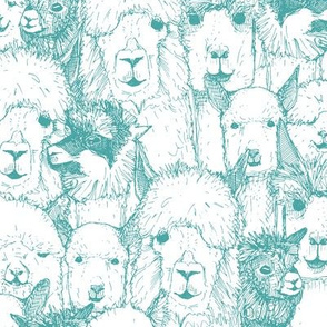 just alpacas teal white