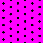Magenta and Black Polka Dots