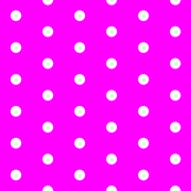 Magenta and White Polka Dots