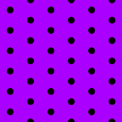 Purple and Black Polka Dots