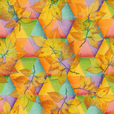 Harlequin Rainbow Leaves