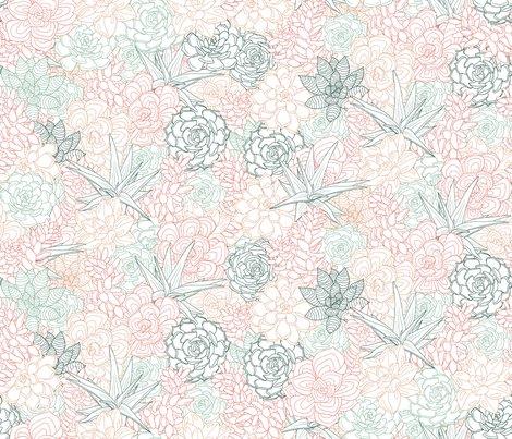 Rsucculent3-01_shop_preview