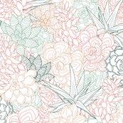 Rsucculent3-01_shop_thumb