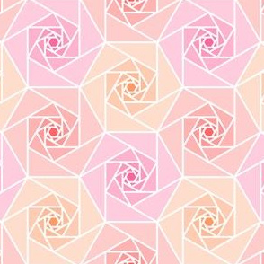 hexagonal geo rose garden