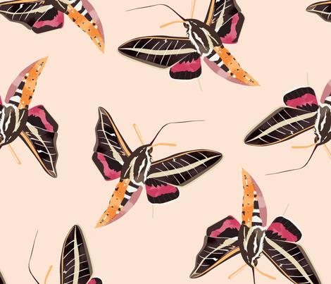 Hemaris fabric by annaboo on Spoonflower - custom fabric