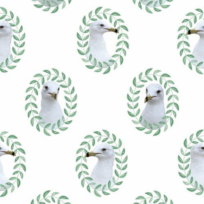 The Regal Seagull in white