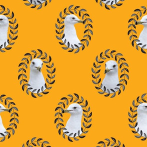 Regal Seagull in Mustard