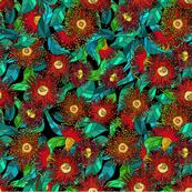 eucalyptus flower_1