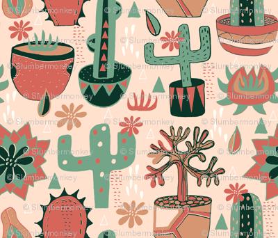Sun Room Succulents